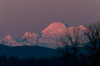 Mt. Baker Sunset
